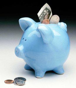 blue piggy bank with money around it